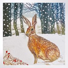 Moonlit hare Christmas cards