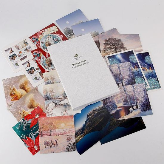 Pack of 20 bumper pack of Christmas cards 2020