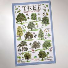 Woodland Trust tea towel - Tree ID