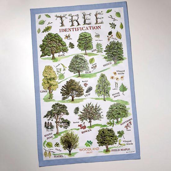 Woodland Trust tea towel - Tree ID