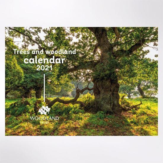 Woodland Trust trees calendar 2021