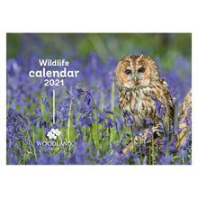 Woodland Trust wildlife calendar 2021