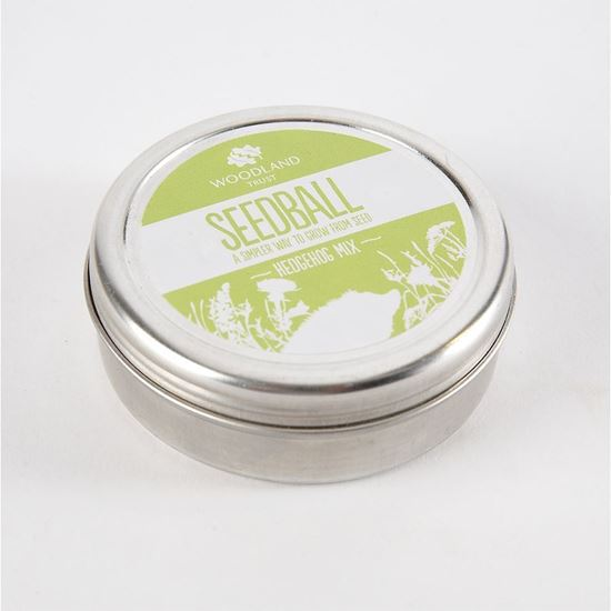 Hedgehog seedball tin create a wildflower patch for hogs to shelter and attracts tasty insects for them to feed on