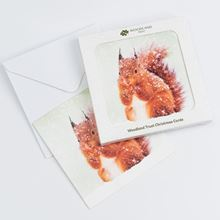 Pack of eight  red squirrel design Christmas cards