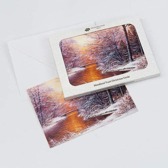 Pack of 8 sunset over the water design Christmas cards