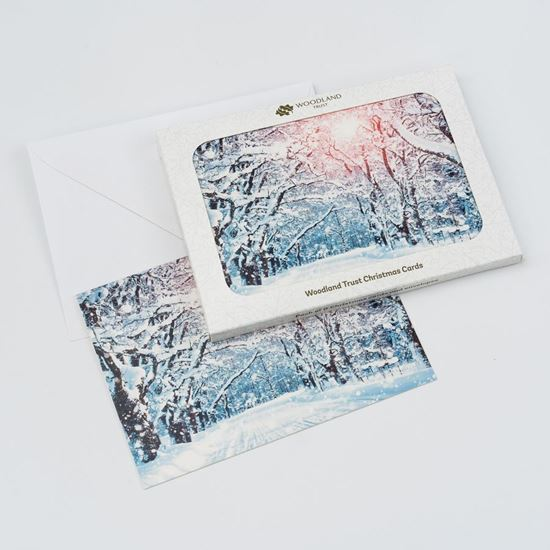 Winter lane design pack of eight Christmas cards
