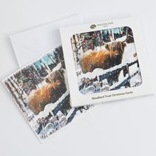 Highland cow design pack of eight Christmas cards
