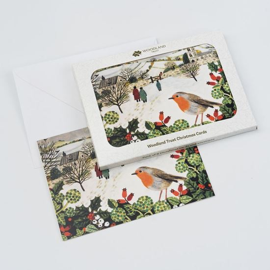 Village robin design pack of eight Christmas cards