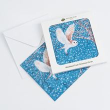 Pack of eight Barn owl at night design Christmas cards