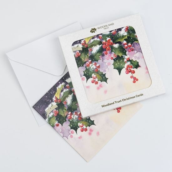 Pack of eight Red berries design Christmas cards