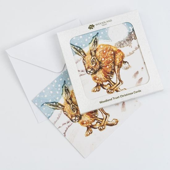 Pack of eight Running hare design Christmas cards