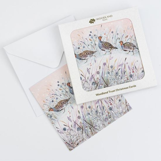 Pack of eight Three partridges design Christmas cards