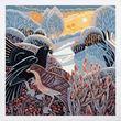 Blackbird and song thrush Christmas cards