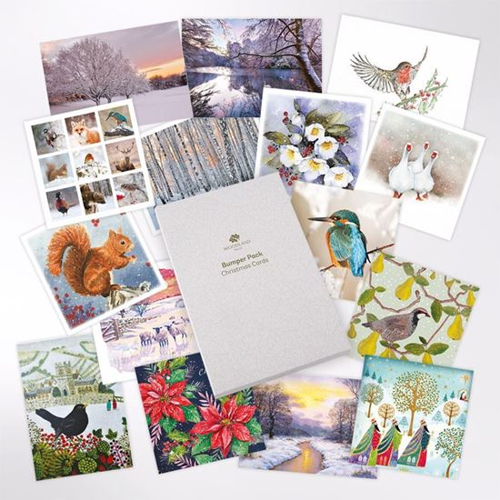 Bumper pack of mixed UK woodland and wildlife designs Christmas cards