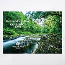 River and woodland cover image