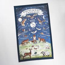 Woodland Trust nocturnal creatures tea towel