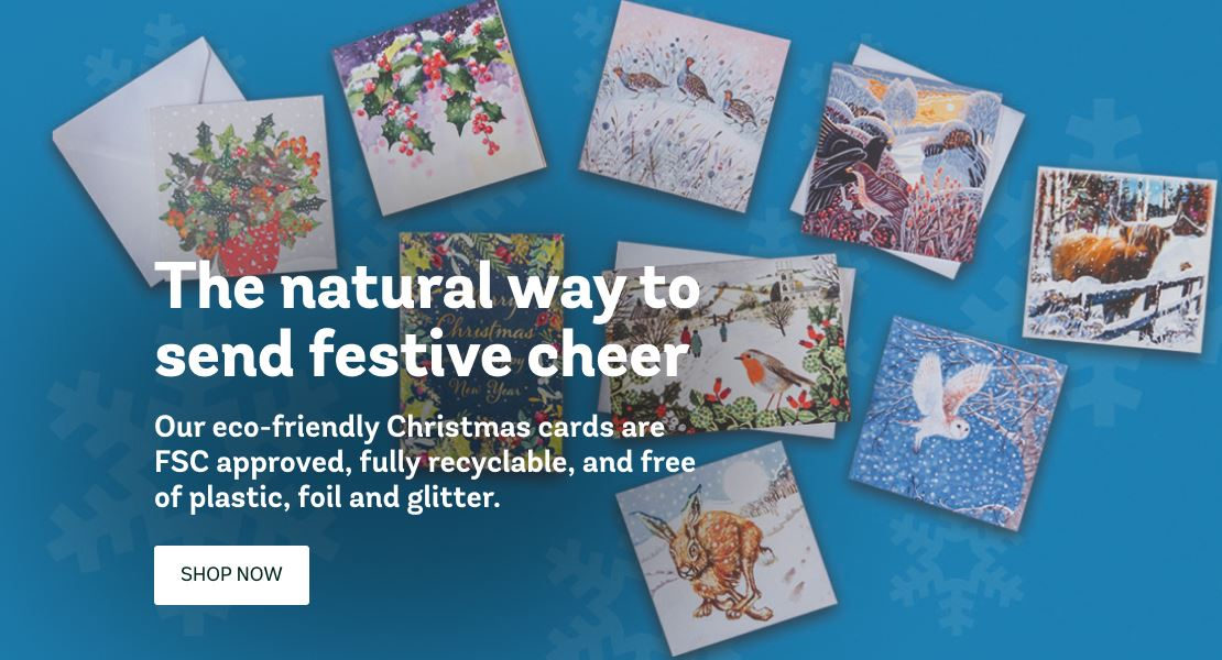 Woodland Trust christmas cards with wildlife and woodland scenes